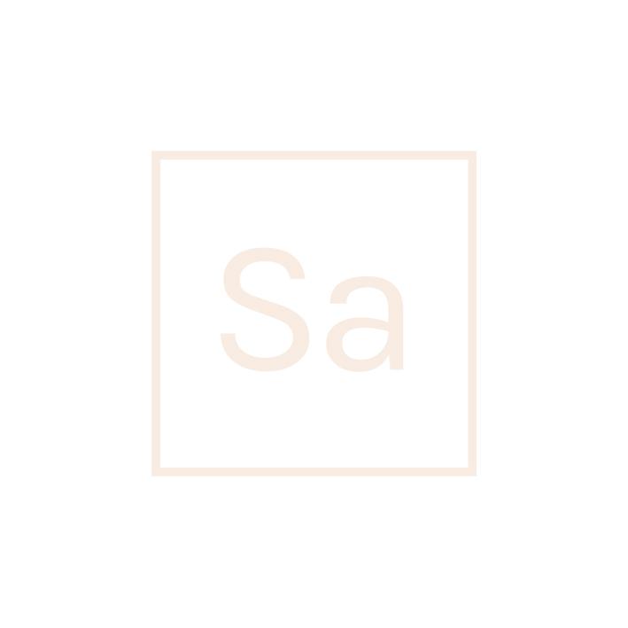 saunum_logo